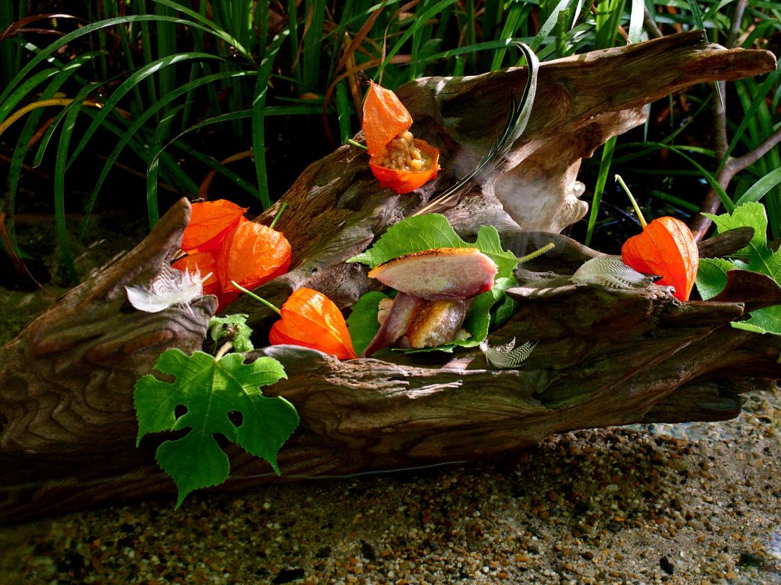 宮下司の日本料理の美意識と根元 鴨